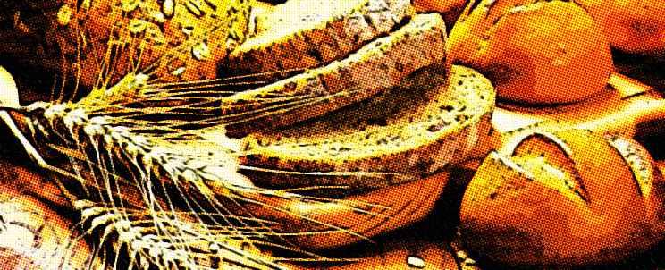 receta para hacer pan sin gluten apto para celíacos