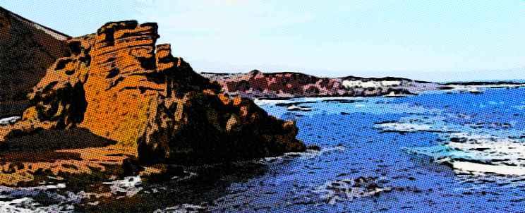 Viaje a Canarias todo incluido, conozca las alternativas más baratas