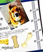 escribiendo un diario intimo de tu mascota
