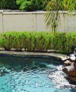 ventajas y desventajas de las piscinas de agua salada
