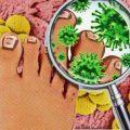 ¿Cómo curar los hongos bajo las uñas?