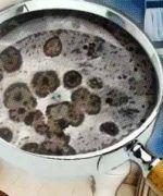 hongos de humedad en el baño