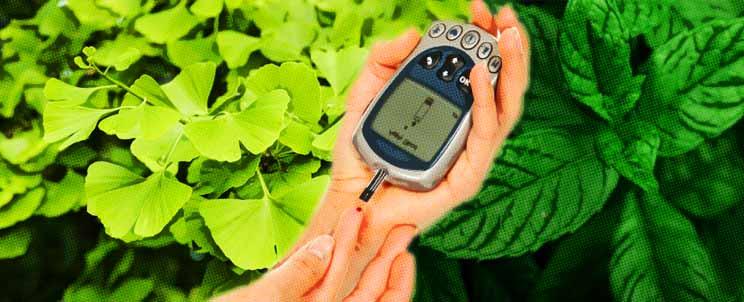 Tratamientos con plantas para curar la diabetes