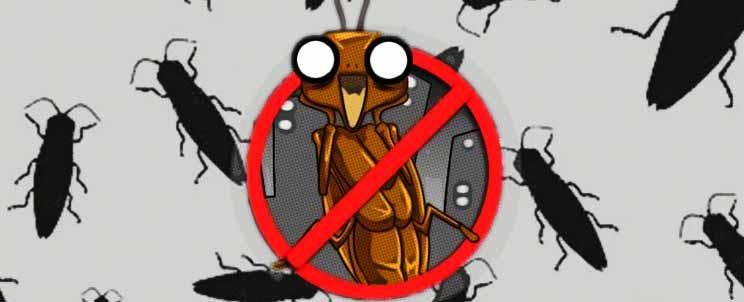 combatir las cucarachas