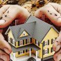 combatir las termitas