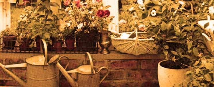 jardín estilo vintage